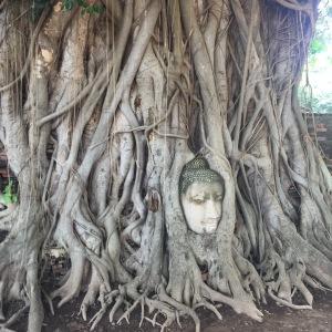 Amphoe Phra Nakhon Si Ayutthaya, Chang Wat Phra Nakhon Si Ayutthaya, Tailândia